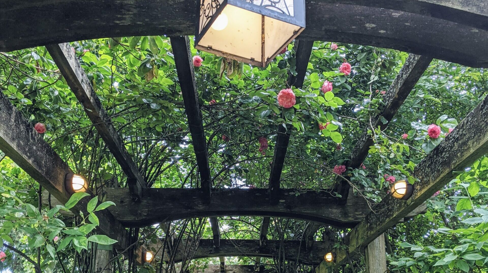 5 signs that will tell you when to replace your patio cover or pergola